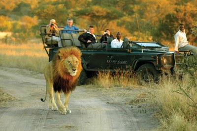 South-Africa-Tailormade-Tours-Safari-Lodge_Safari-drive-to-view-lions