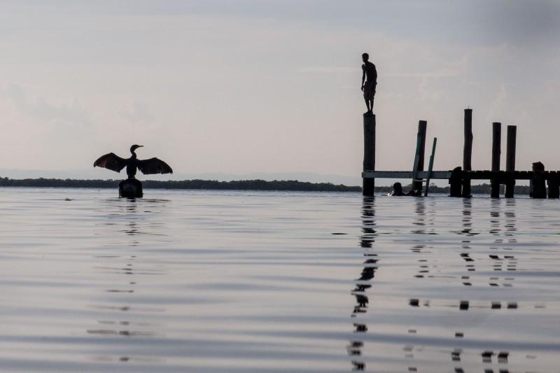 Belize-Wildlife-Holidays-With-Nick-Baker_04