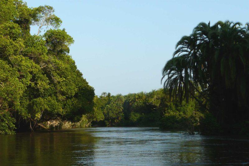 Congo-Wildlife-Tours-Itinerary-1_Odzala-Lekoli-river