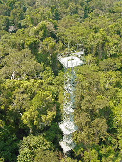 BLOG-Cristalino-Jungle-Lodge---Canopy-Tower---Jorge-Lopes